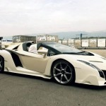 A Girl owens this $4.4 Million Lamborghini Veneno Roadster (3)