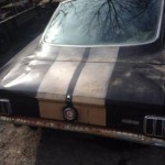 Rotting 1966 Mustang Shelby GT350 H selling for $70,000 (3)