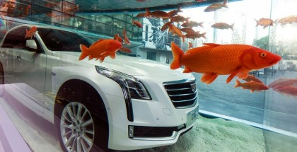 A new Cadillac CT6 is displayed submerged in a giant fish tank outside a mall in Shanghai on February 25, 2016 as part of a promotion for the US carmaker. Finance ministers from the world's top 20 economies meet in Shanghai from February 26 with the global economy assailed on multiple fronts from China's slowing growth to weak commodity prices, and disagreements between them on how best to face the challenges.  CHINA OUT     AFP PHOTO