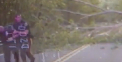 Officer almost gets crushed by falling tree  (1)