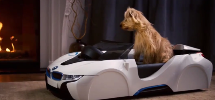 BMW dDrive For Your Dog – Video