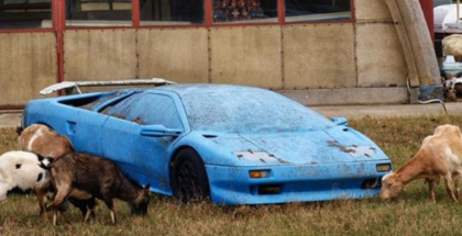 Iconic Rare Cars Abandoned Left To Rot - Barn Find (1)