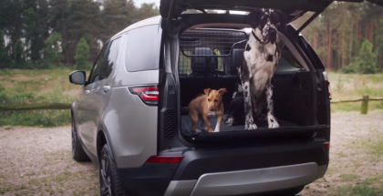 Land Rover Dog & Pet Friendly Package