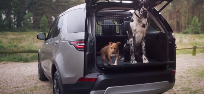 Land Rover Dog & Pet Friendly Package – Video
