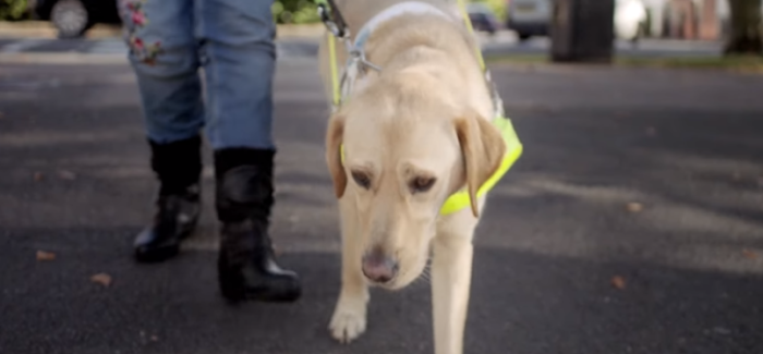Jaguar Electric Car Audible Vehicle Alert System Helping The Blind – Video